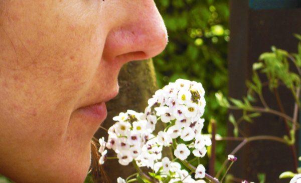 kt_2020_380_yvoire_jardin des cinq sens3_2048_10